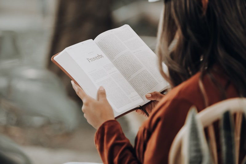 Fotografija sa leđa žene koja čita knjigu